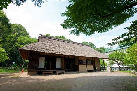 日本东京-农舍