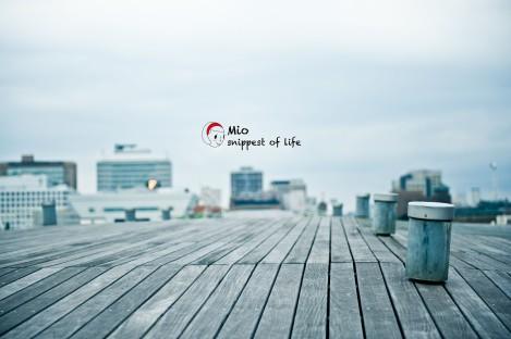 横滨国际客轮大栈桥-微风轻吹,舒服得想睡觉