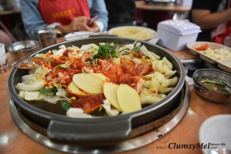 有杏包菇,雞肉,韓式條狀年糕,包菜,蘿蔔和辣醬等等。