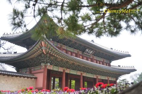 吃完後我們就進去昌慶宮逛逛