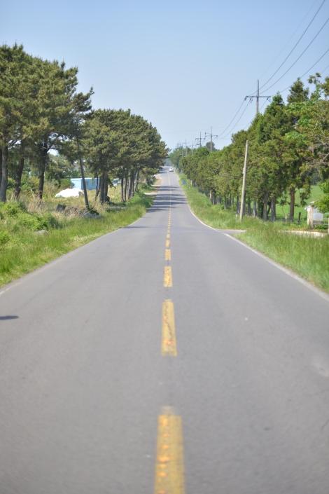一望無際的道路
